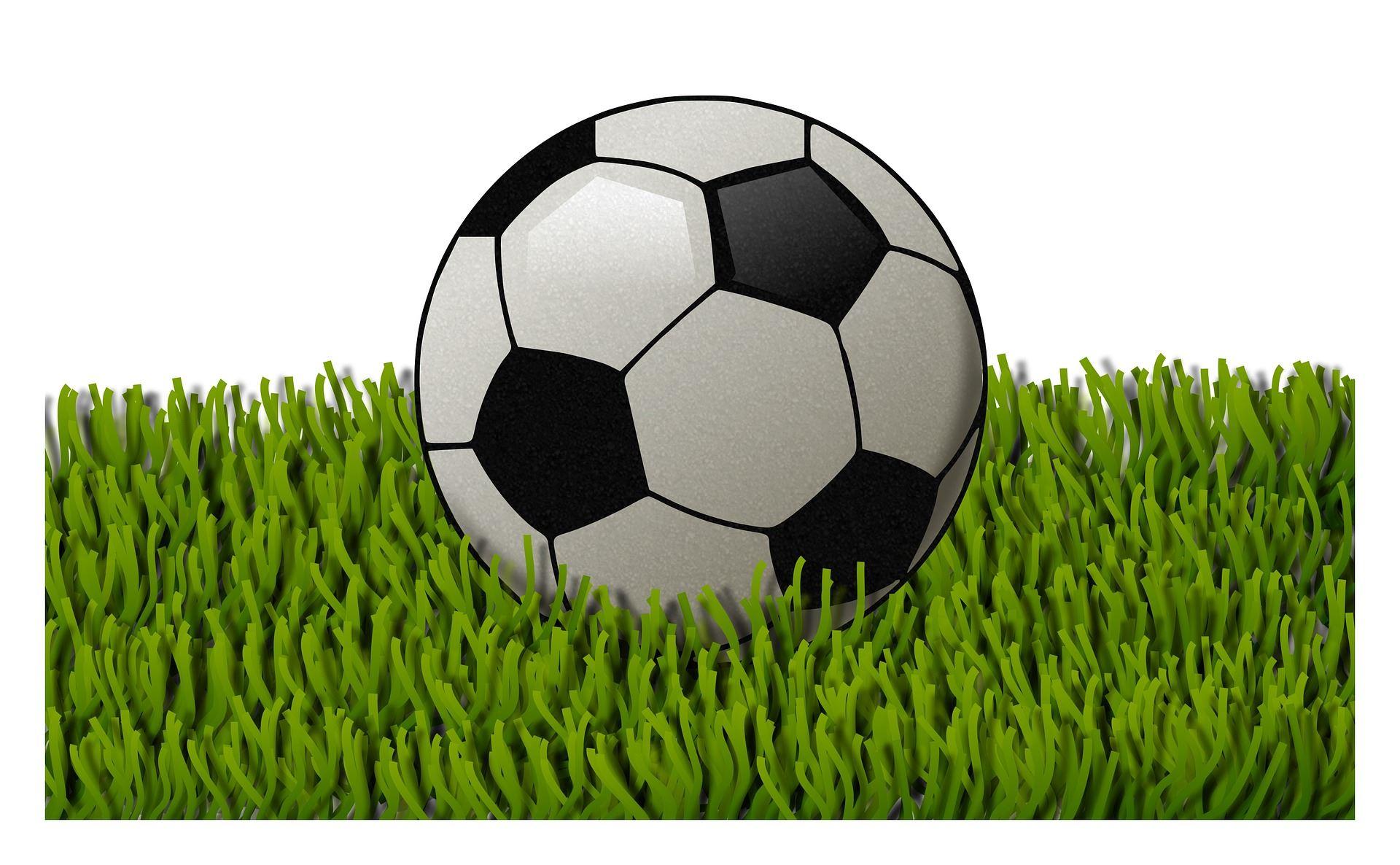 Soccer Ball and Grass